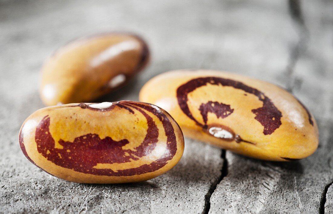 Three borlotti beans (close-up)