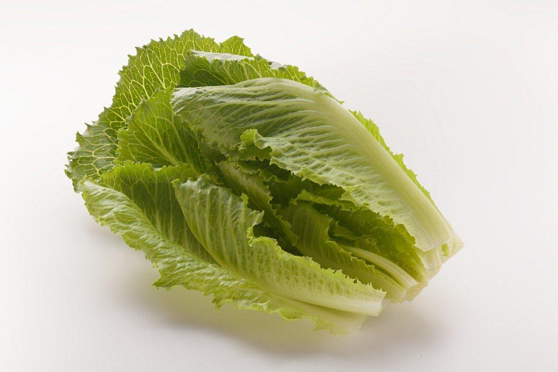 A romaine lettuce