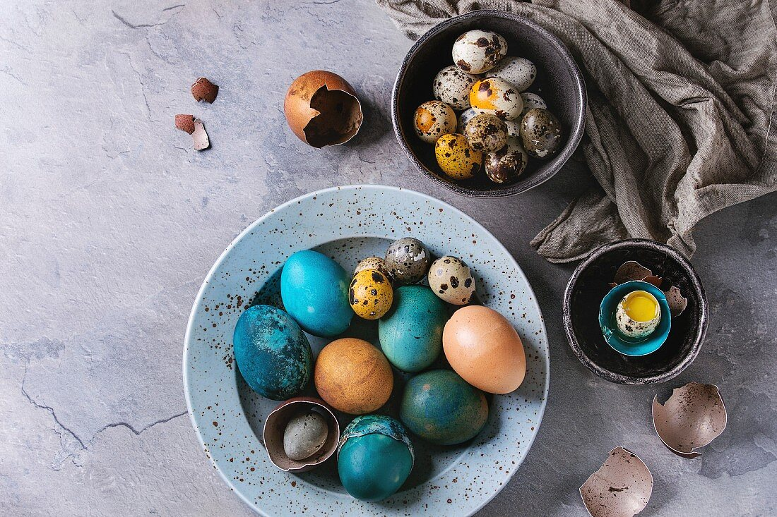 Colored Easter blue brown chicken and quail eggs, whole and broken with yolk in shell in spotted plate and black bowls