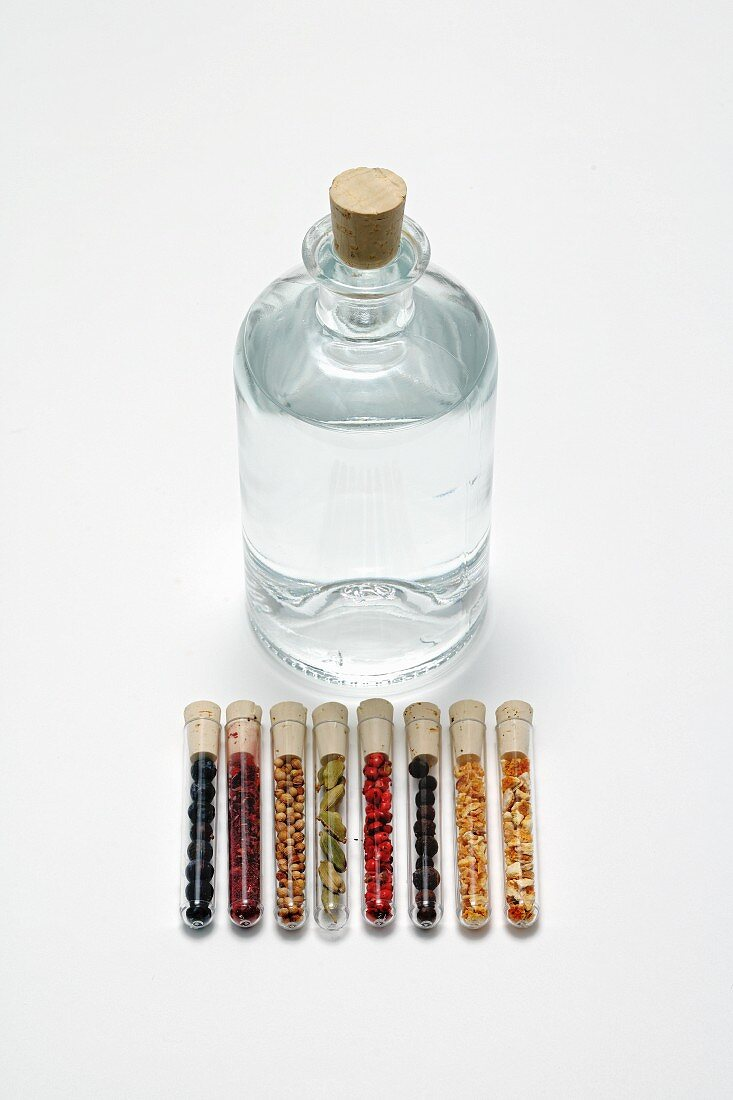 Gin in a bottle with various flavourings in test tubes