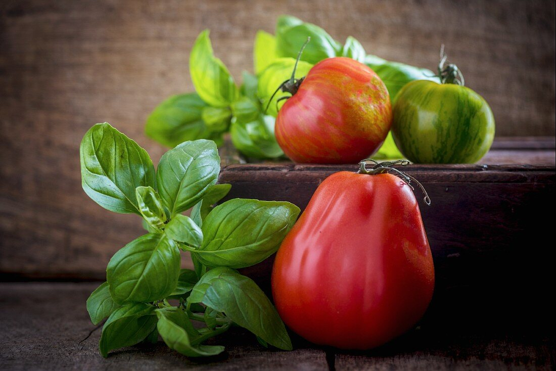 An arrangement of beef tomatoes, zebra tomatoes and basil