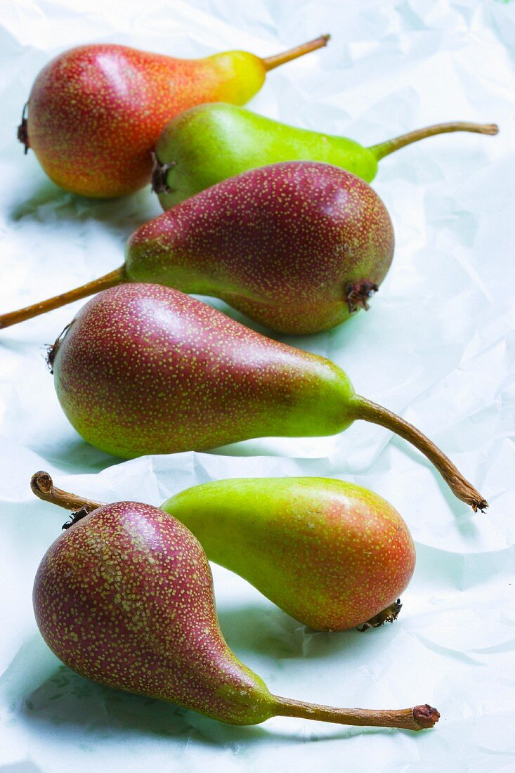 Several pears on white paper