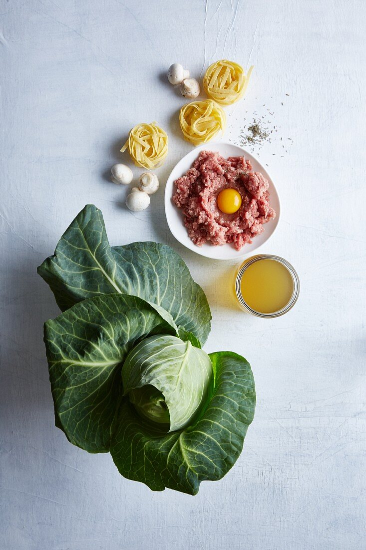 Ingredients for meatballs on pointed cabbage tagliatelle