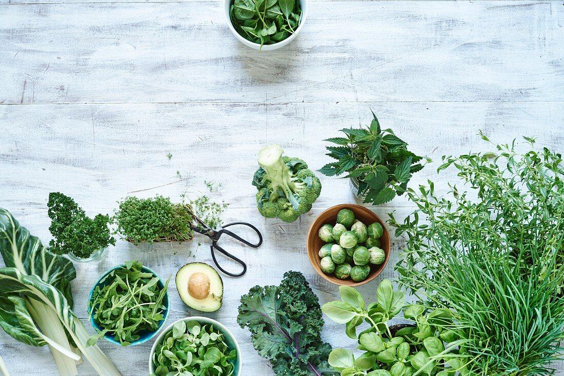 Grünes Gemüse und Kräuter