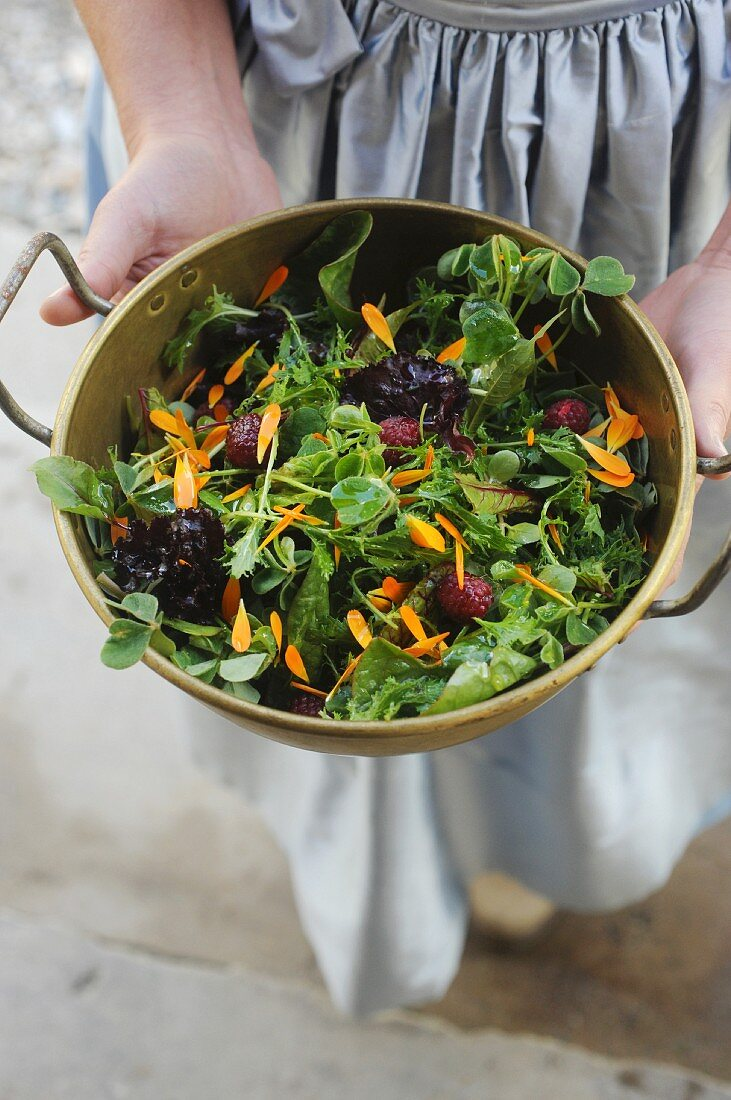 Green lettuce with berries and petals in a salad bowl
