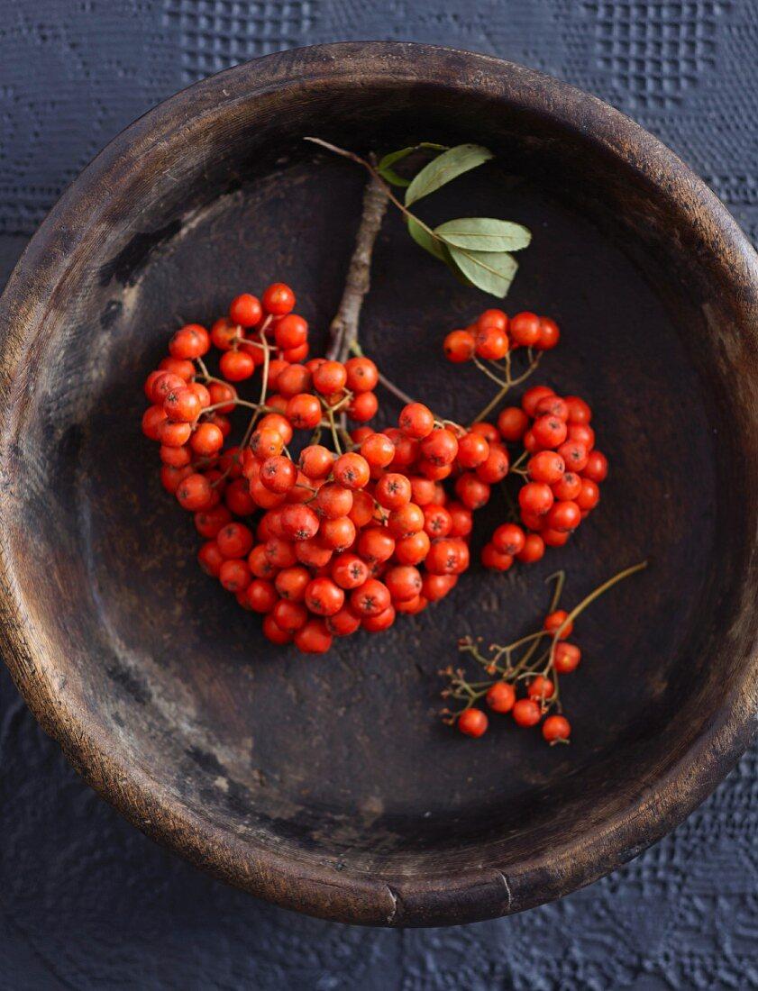 Rowan berries in a wooden bowl