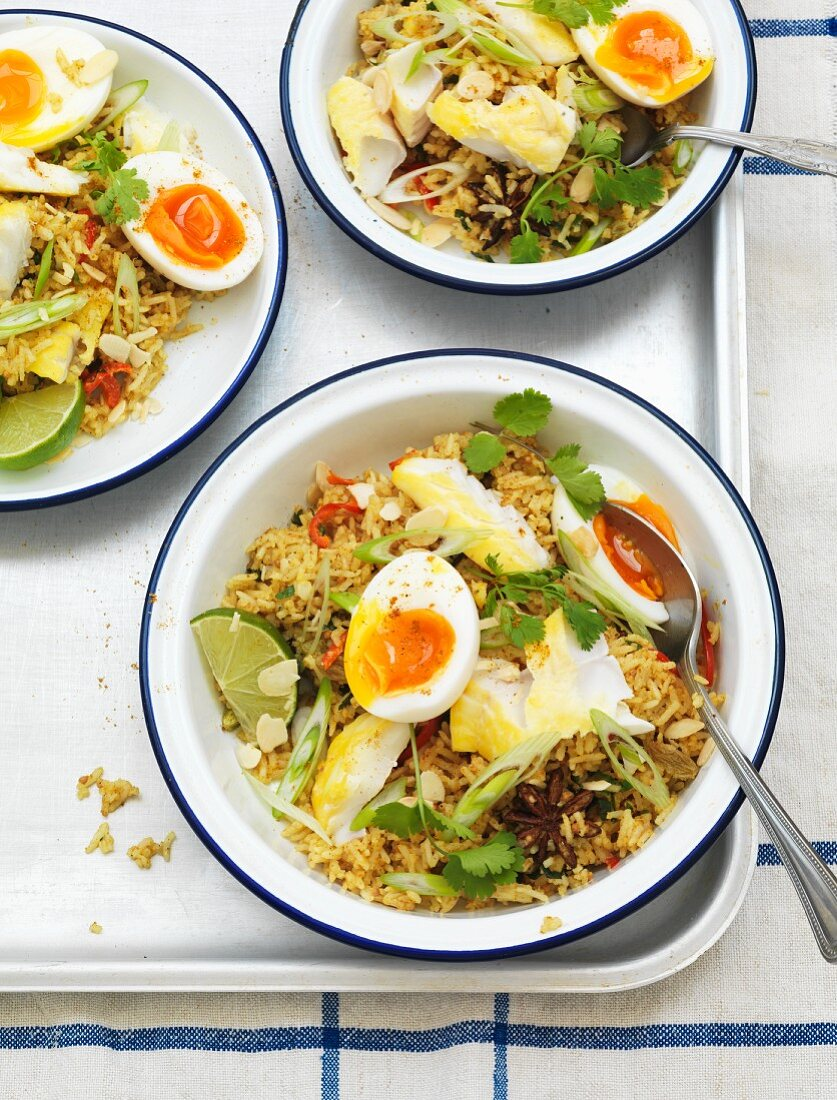 Kedgeree (rice dish with fish and eggs, England)