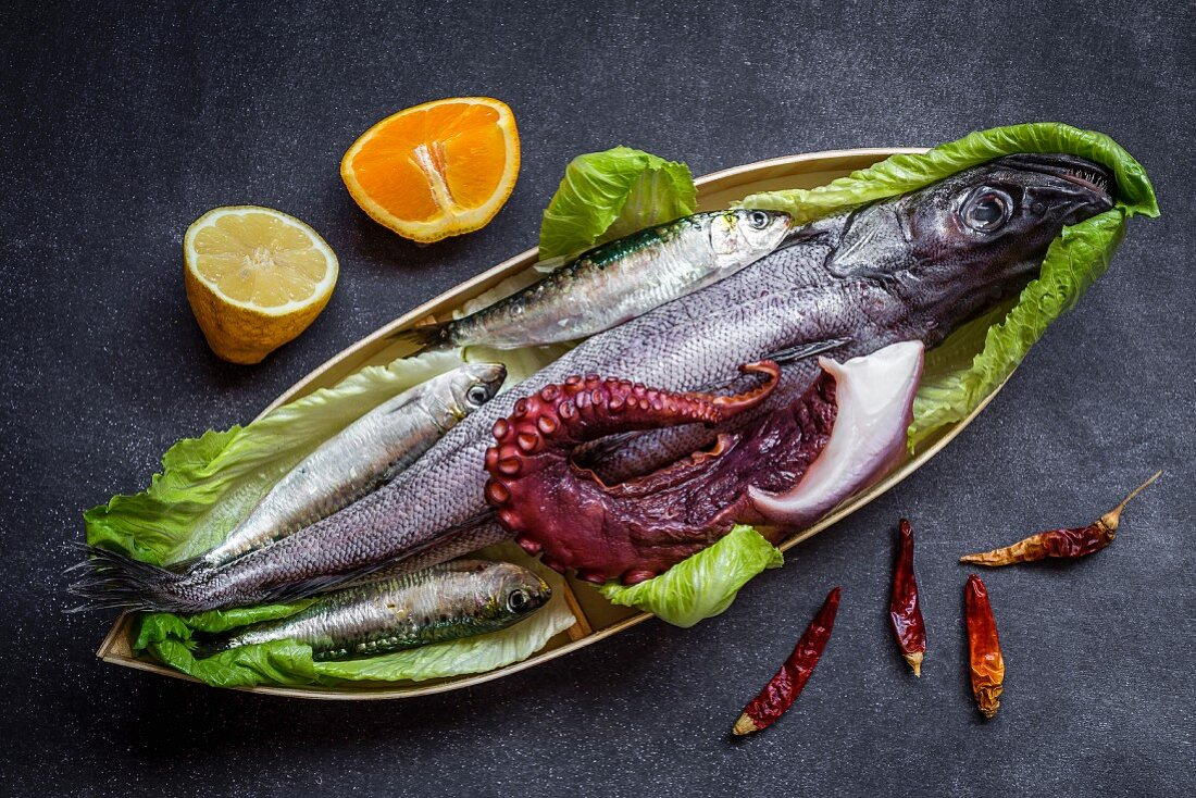 Sardines, pike and octopus on a serving platter