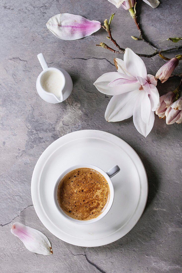White cup of black coffee, served on white saucer with jug of cream and magnolia flower blossom branch