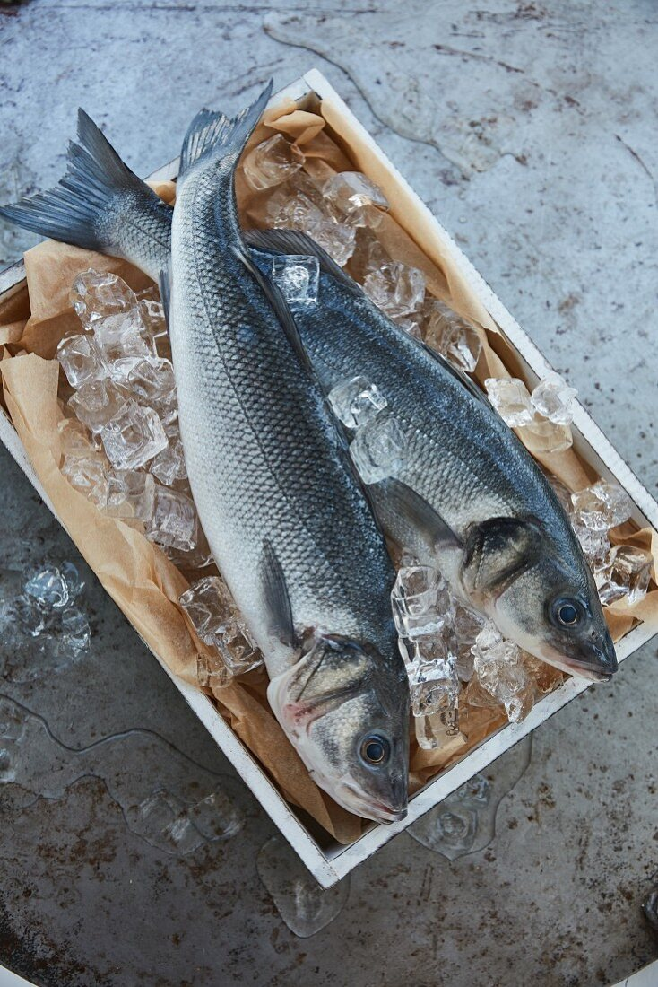 Two fresh fish on ice in a wooden crate (top view)