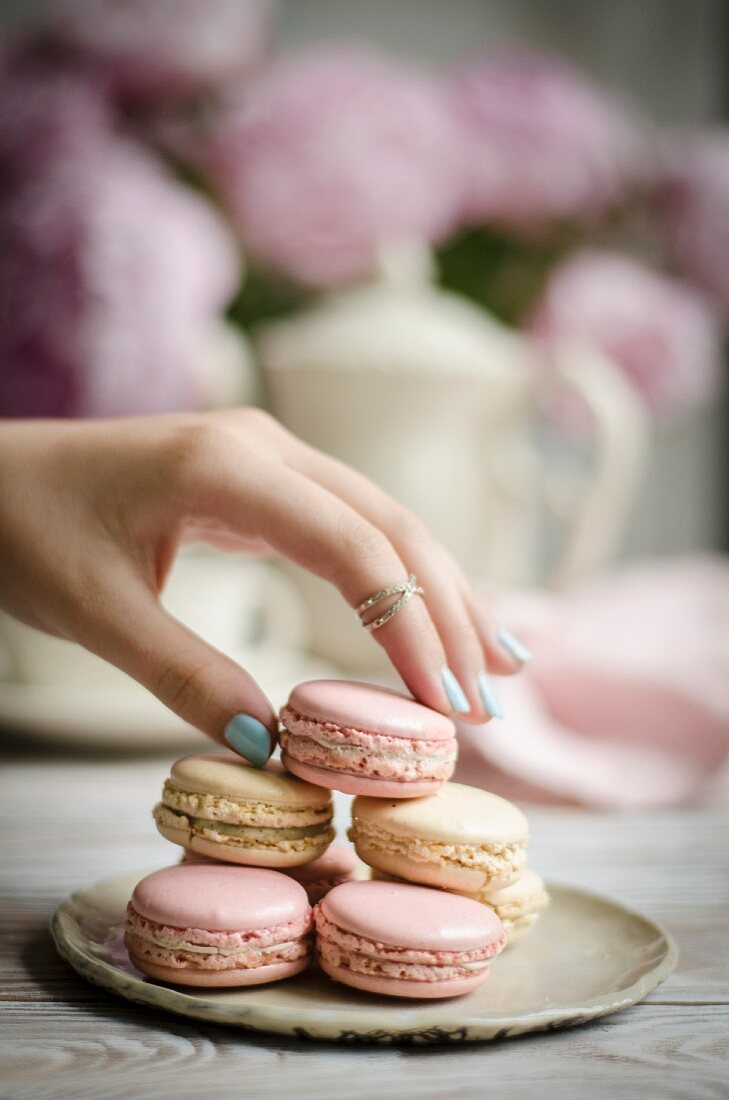 Rose and Vanilla Macarons