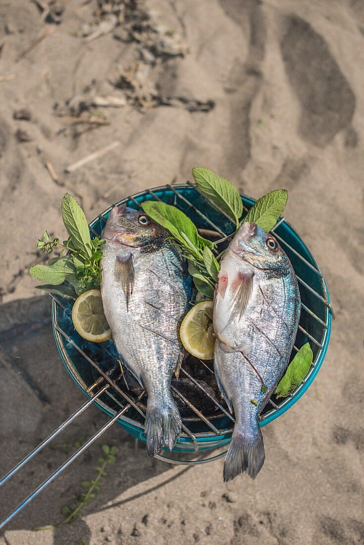 Fish barbecued on a beach with herbs and lemon