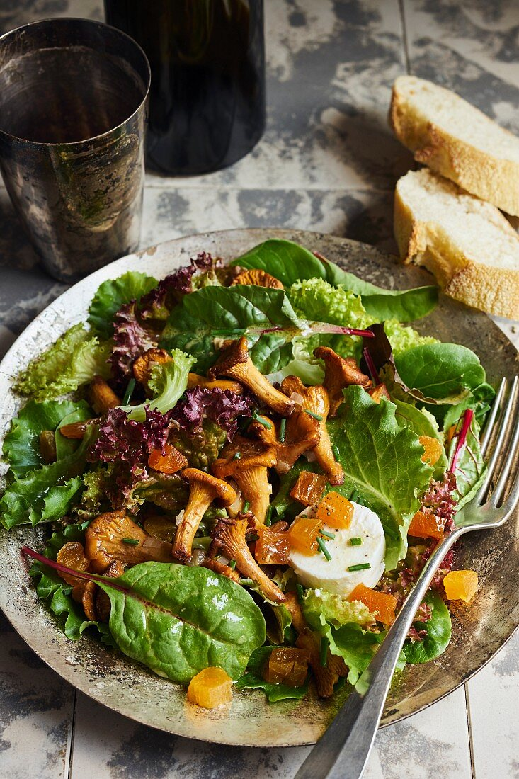 Green leaf salad with chanterelles, dried apricots and goat's cheese