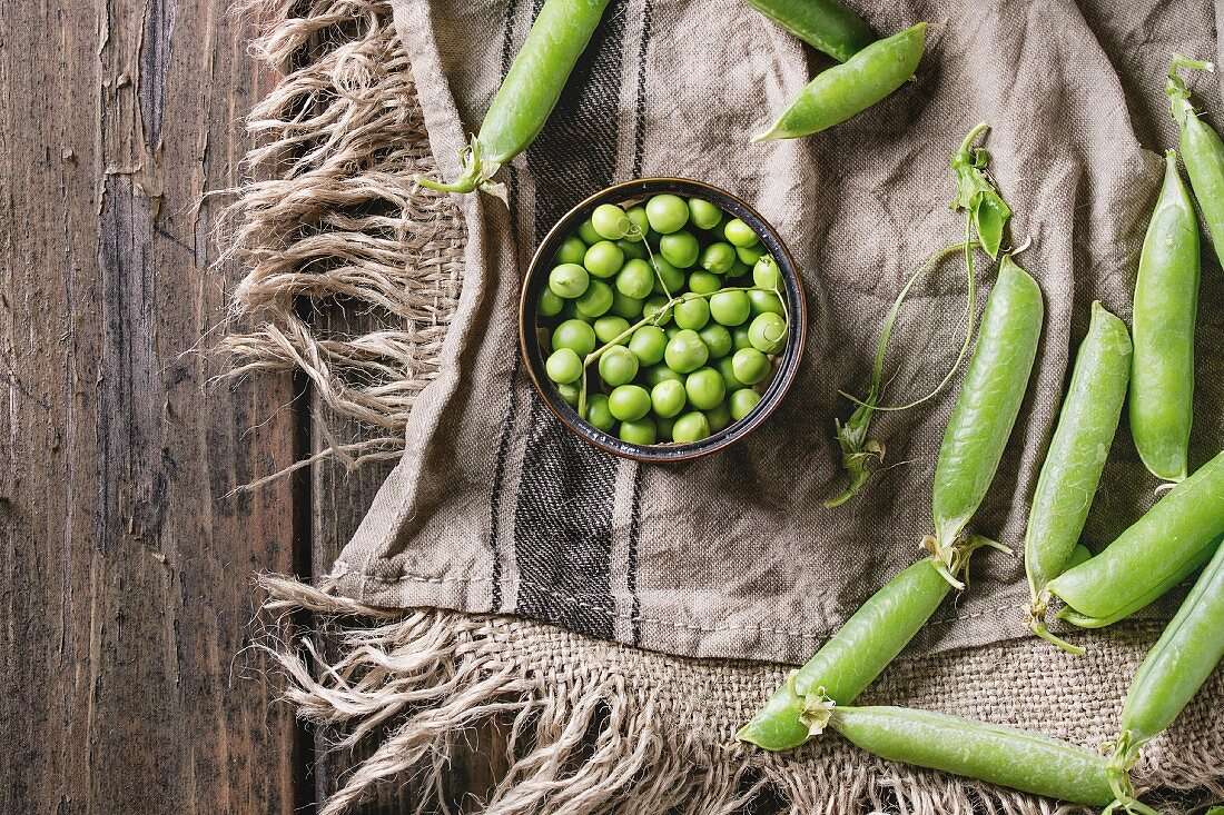 Young organic green pea pods and peas in can tin over old dark wooden planks with sackcloth textile background