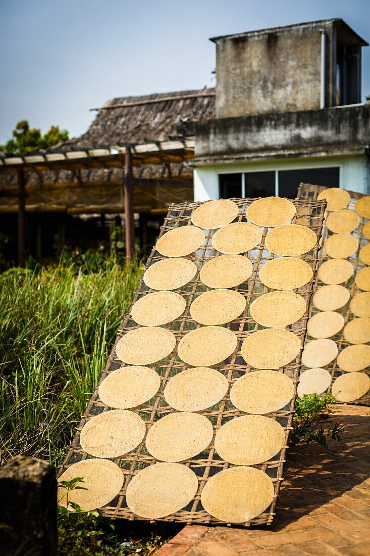 Rice paper drying in the sun in Hoi An, Vietnam
