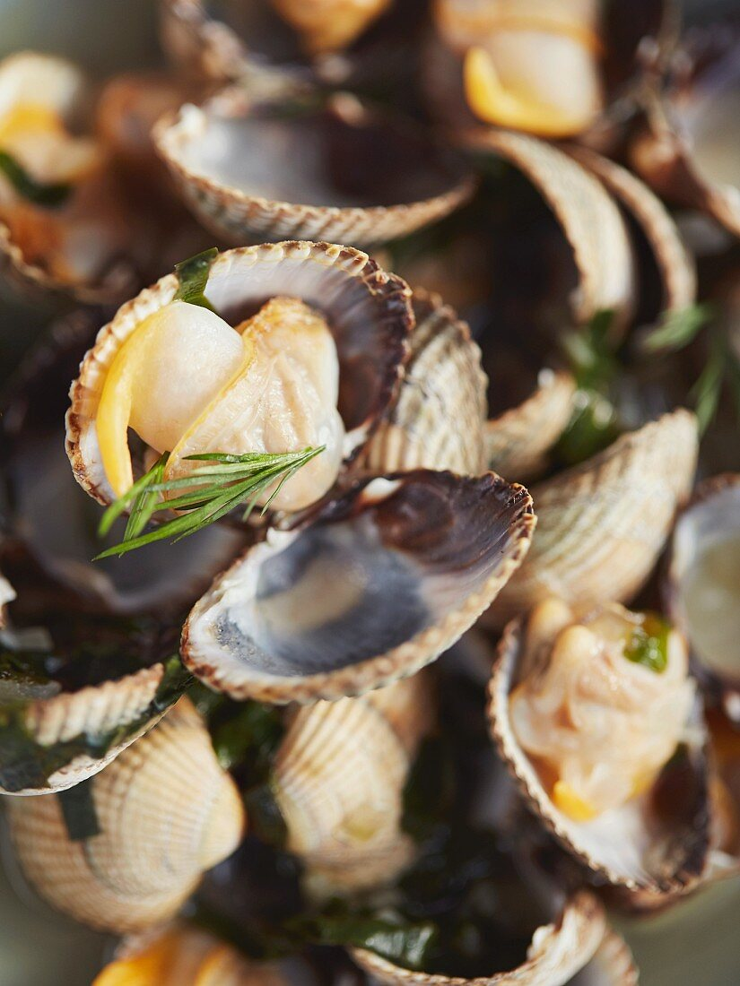 Steamed cockles (close-up)