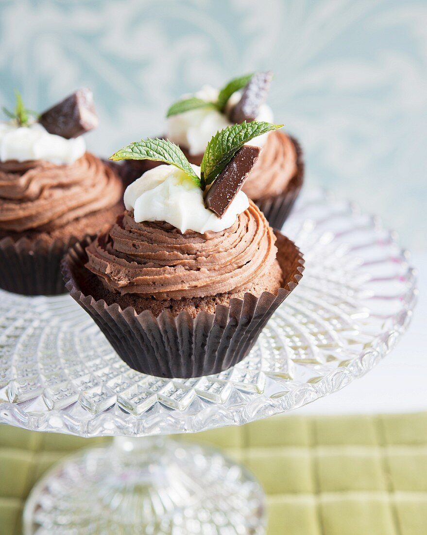 Cupcakes with chocolate buttercream and mint