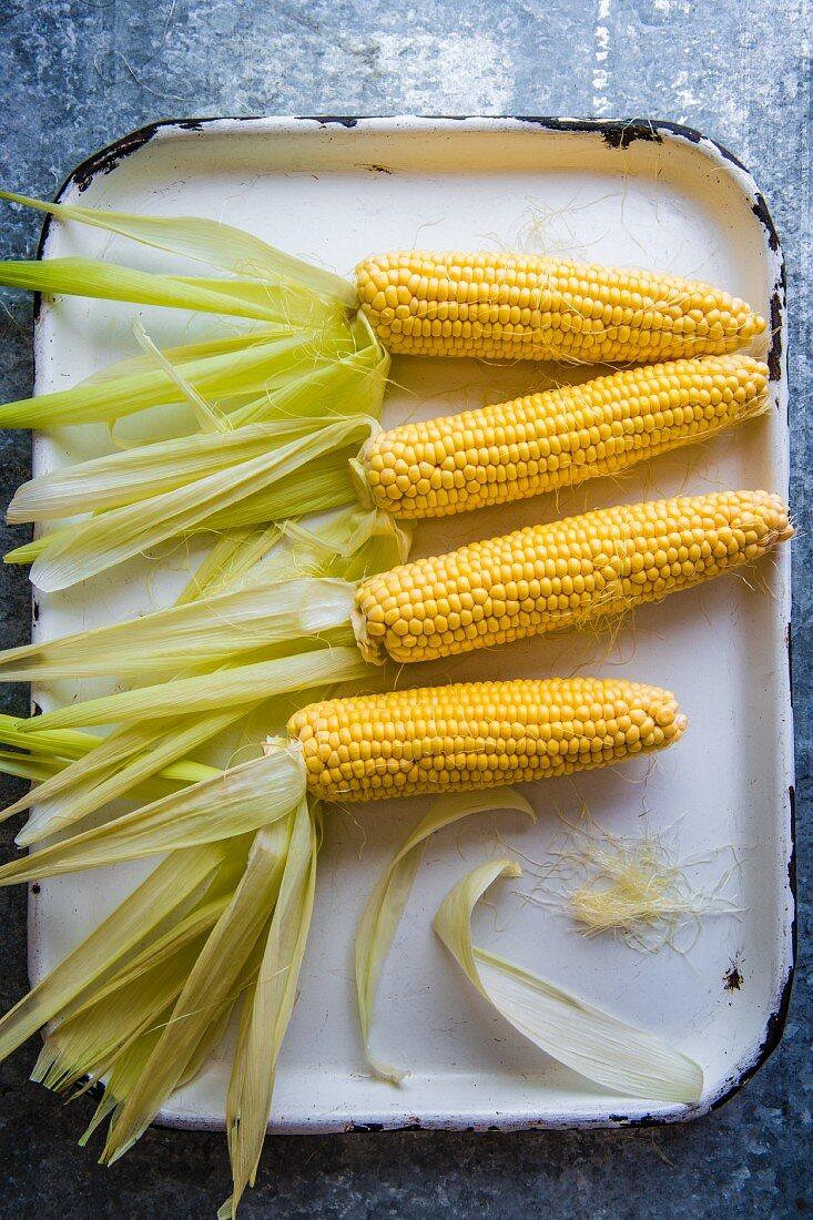 Corn cobs on an enamel baking sheet