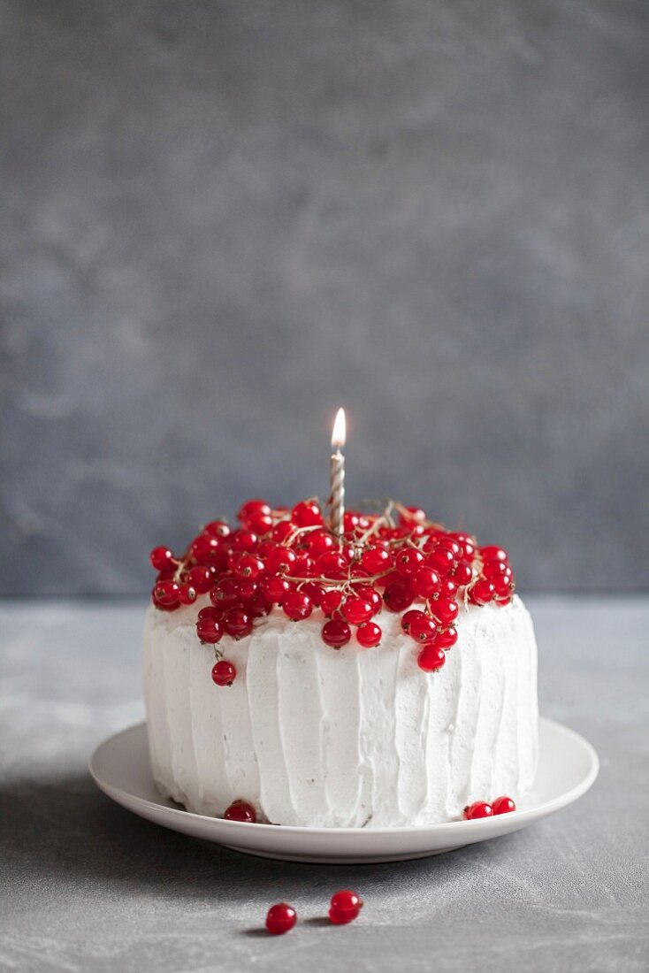 Cream cake with red currants for a birthday party