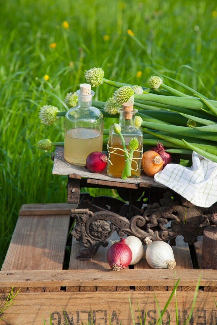 Onion juice and onion syrup on an antique scale (natural remedies)