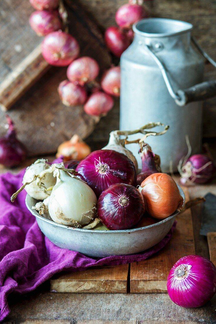 Verschiedene Zwiebeln in Schüssel
