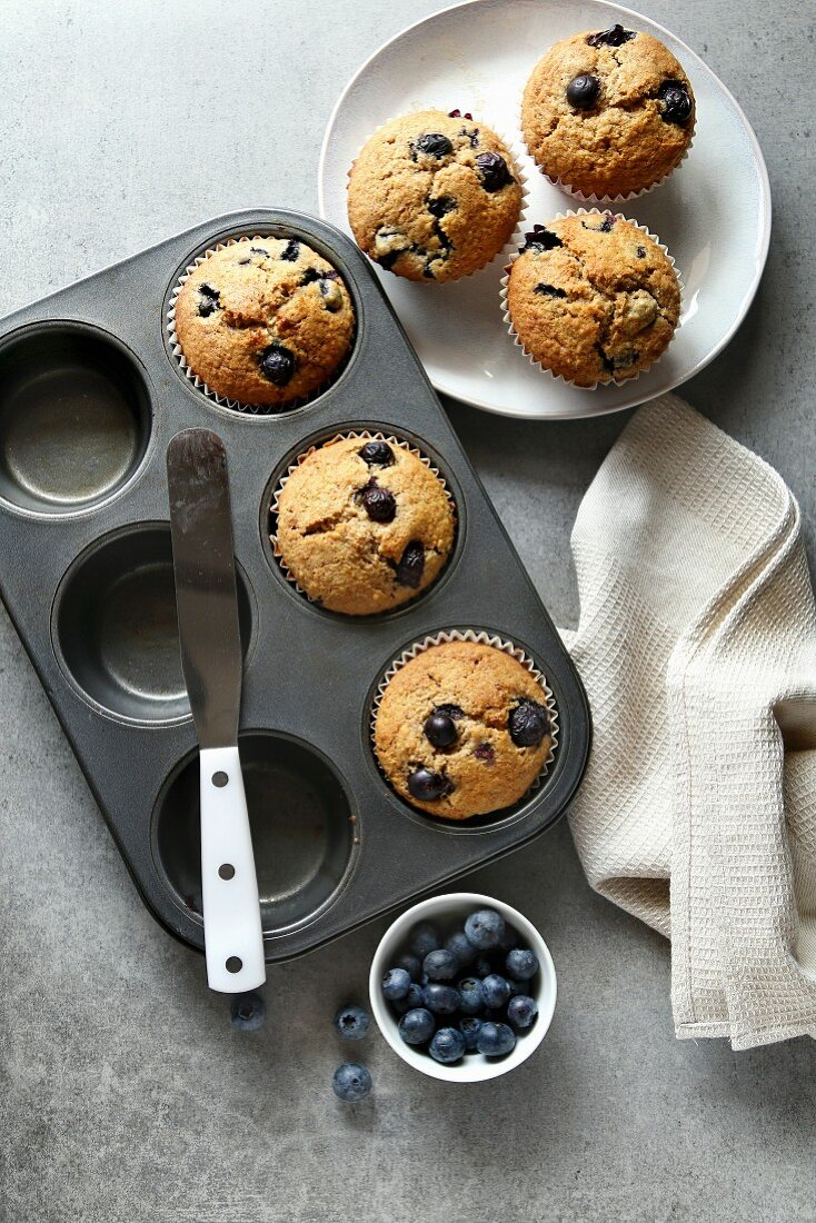 Freshly baked blueberry muffins in a baking tray and on a plate