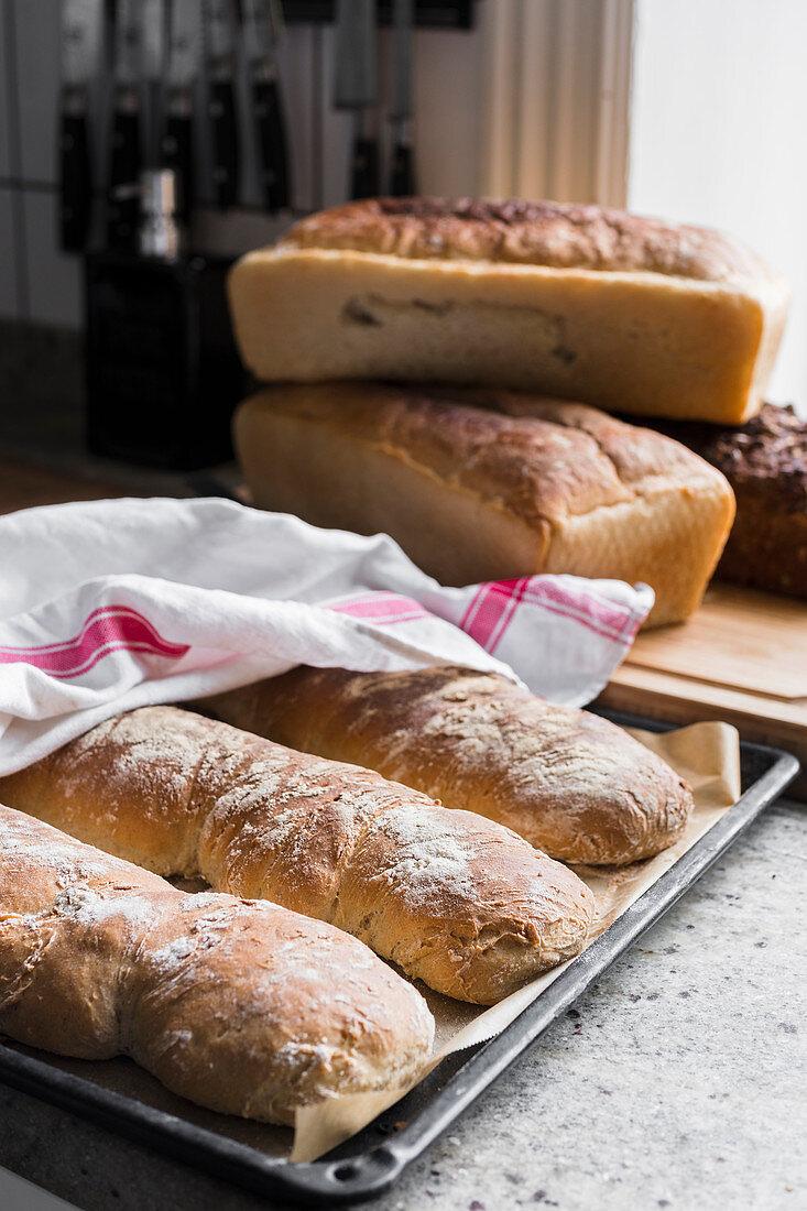 Tray of freshly baked bread
