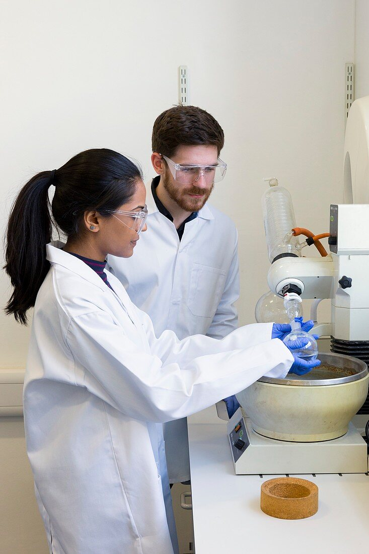 Chemistry students using rotary evaporator