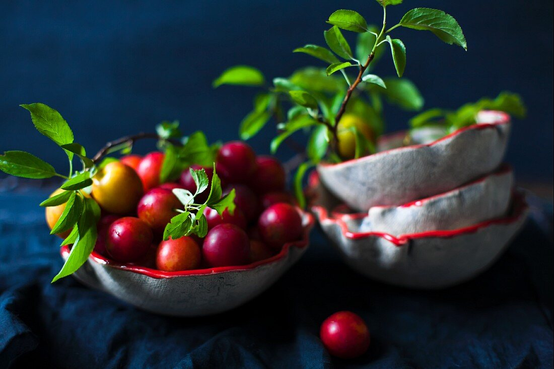 Small plums and leaves in ceramic bowls