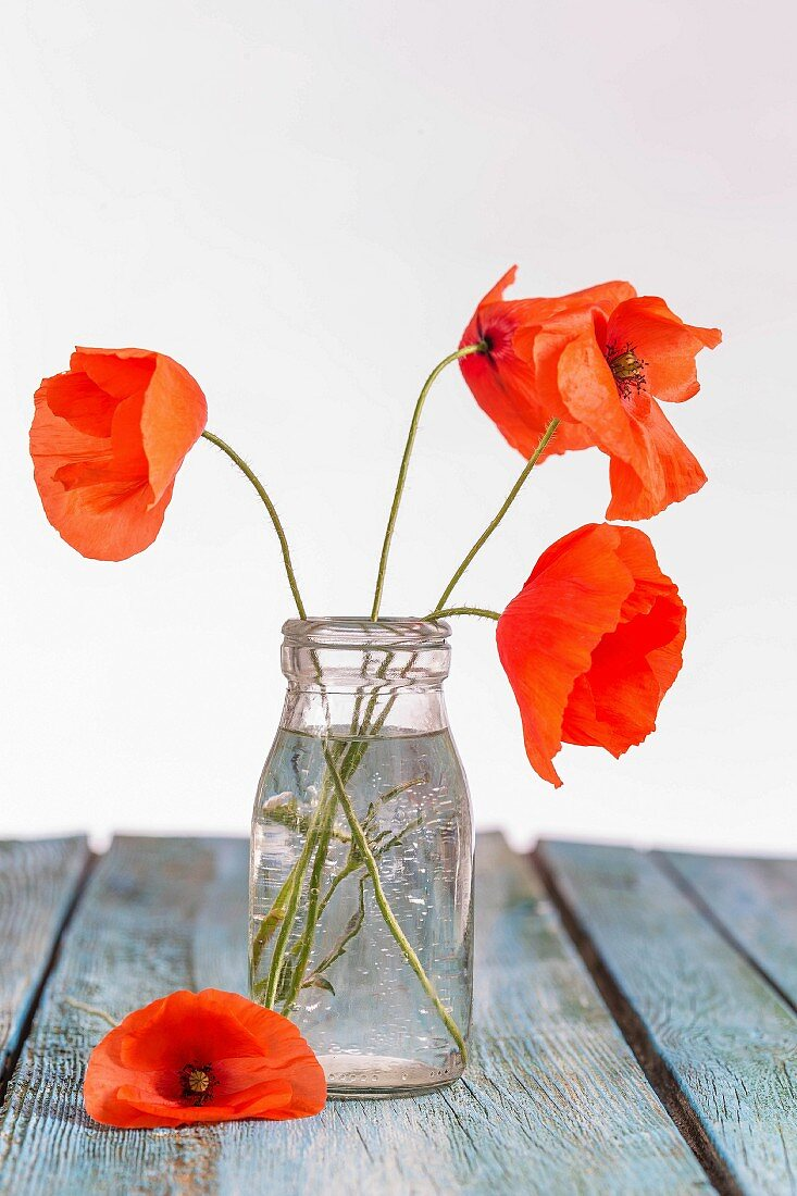 Red poppies in a glass bottle on a wooden table