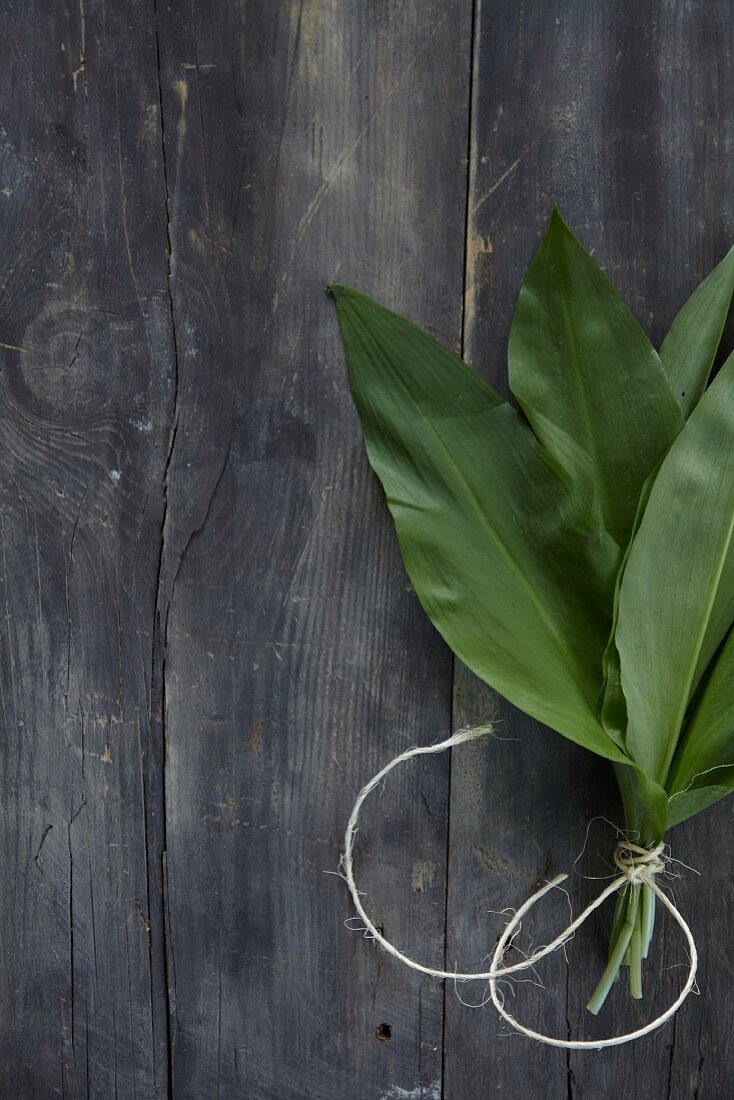 Fresh wild garlic leaves, tied together with string, on a wooden background