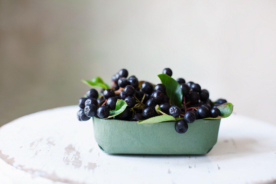 Aronia berries in a cardboard tray