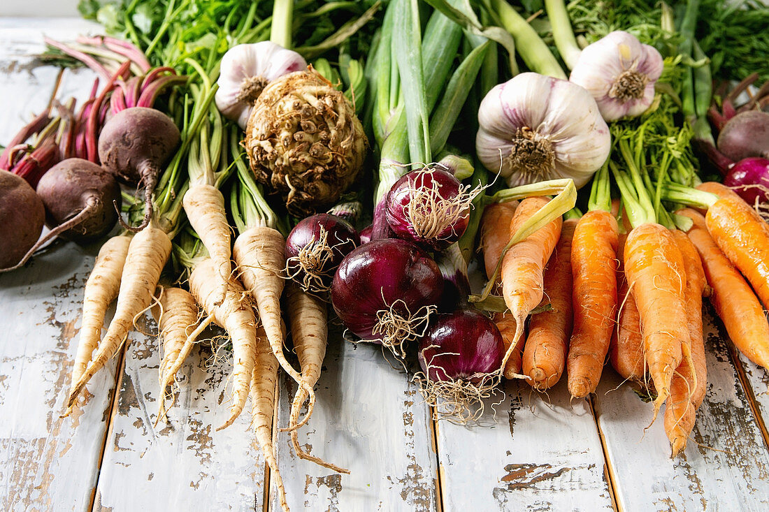 Variety of root garden vegetables carrot, garlic, purple onion, beetroot, parsnip and celery