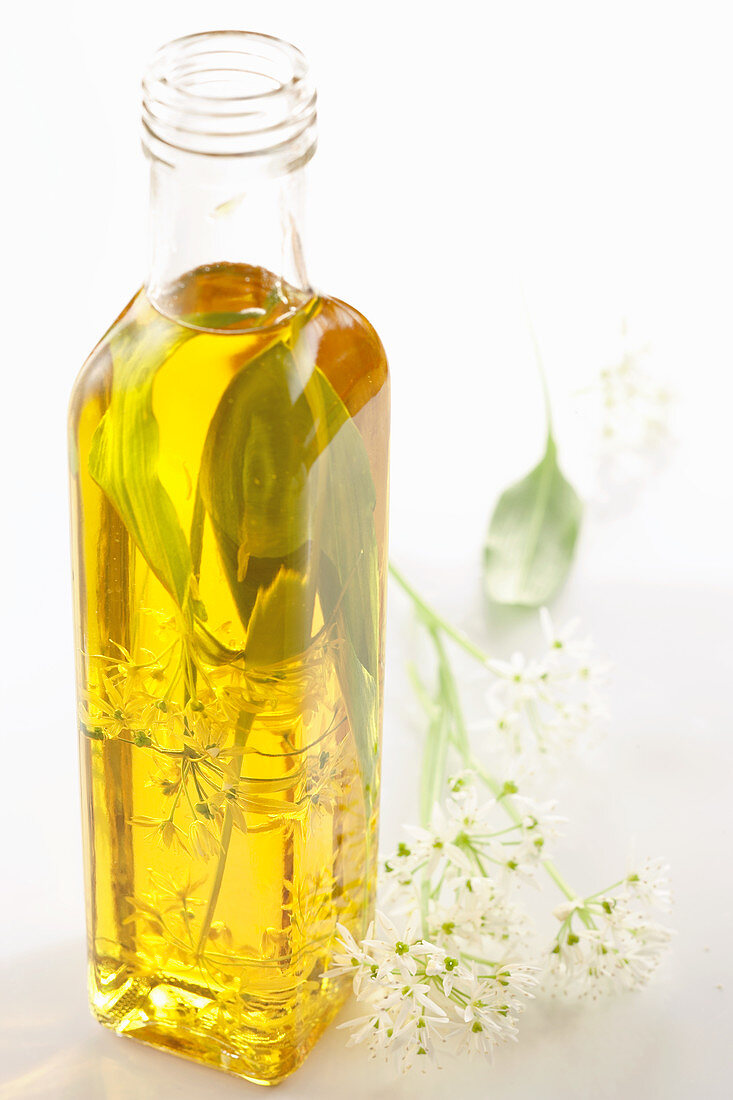Wild garlic oil with fresh leaves
