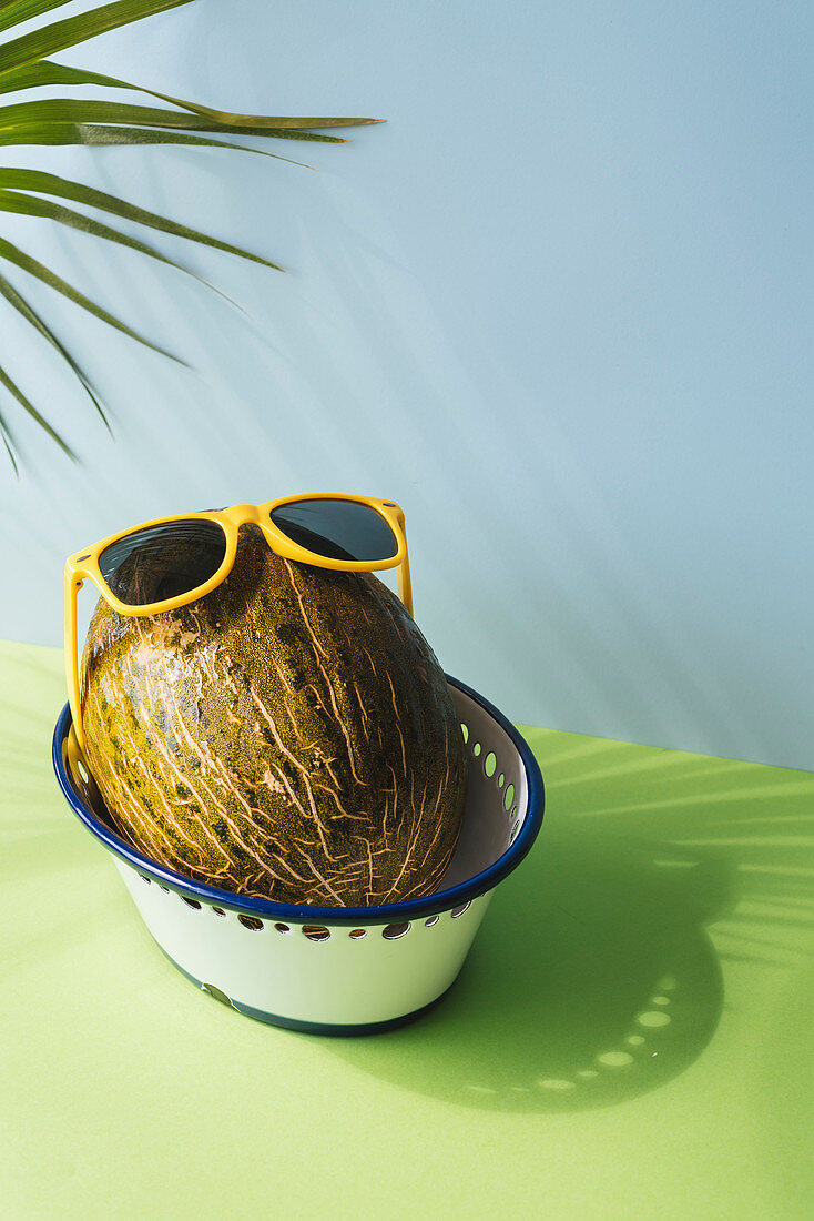 Toad skin melons variety with fun sunglasses, in blue and green background