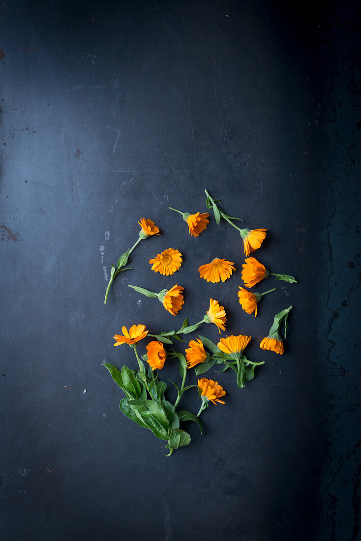 Frische Ringelblumen