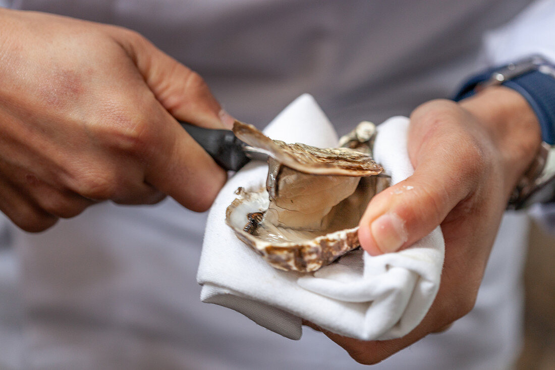 A fresh oyster being opened