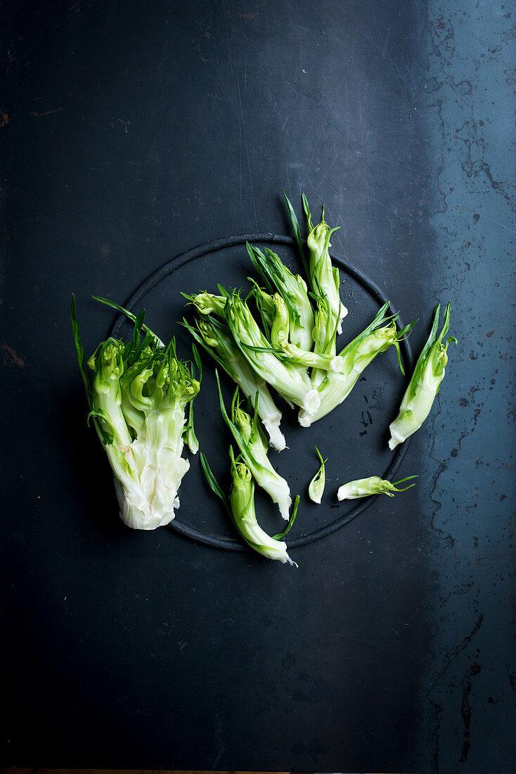 Puntarelle salad, cut