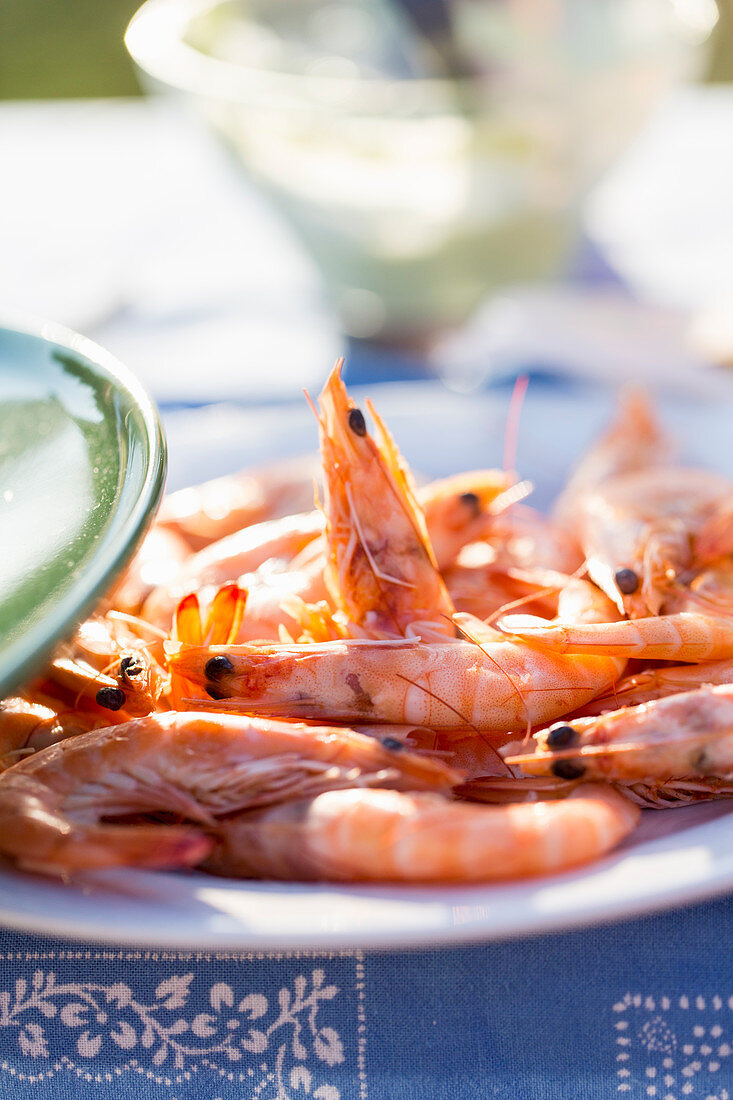 Prawns, ready to be grilled