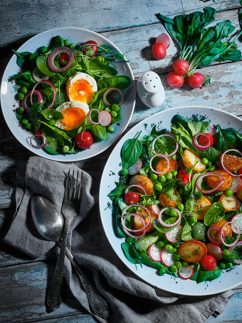 Two vegetarian spring salads with egg and fried potatoes