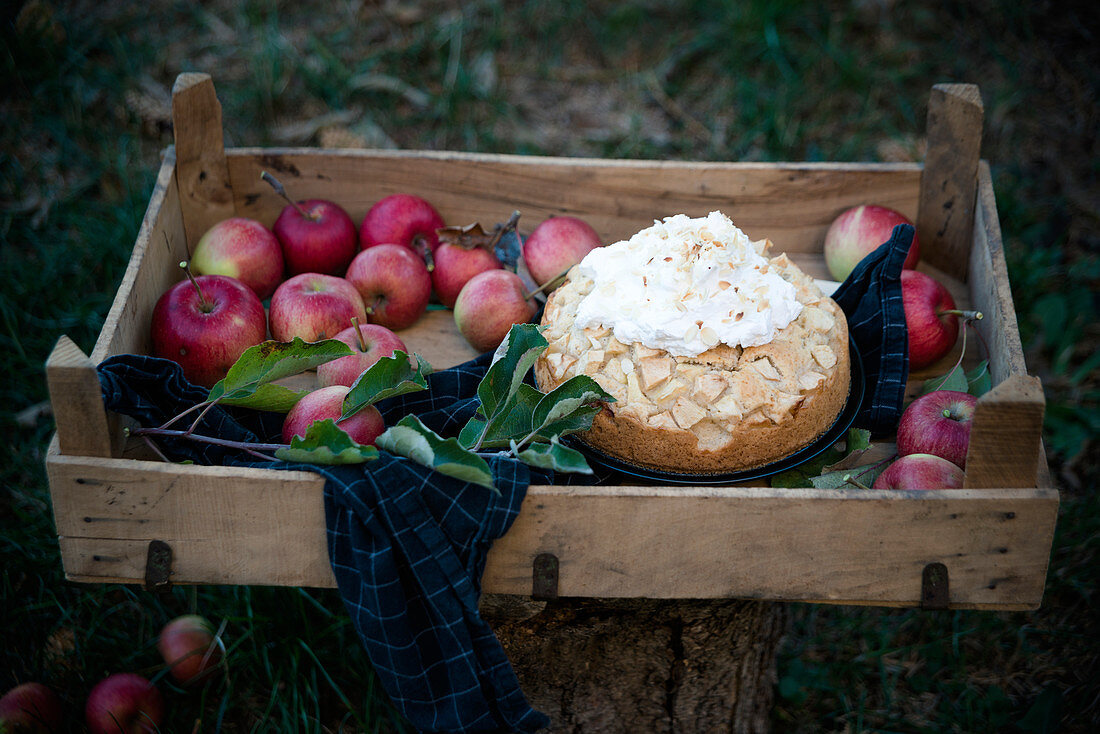 Vegan apple pie with vanilla soy cream and toasted almonds