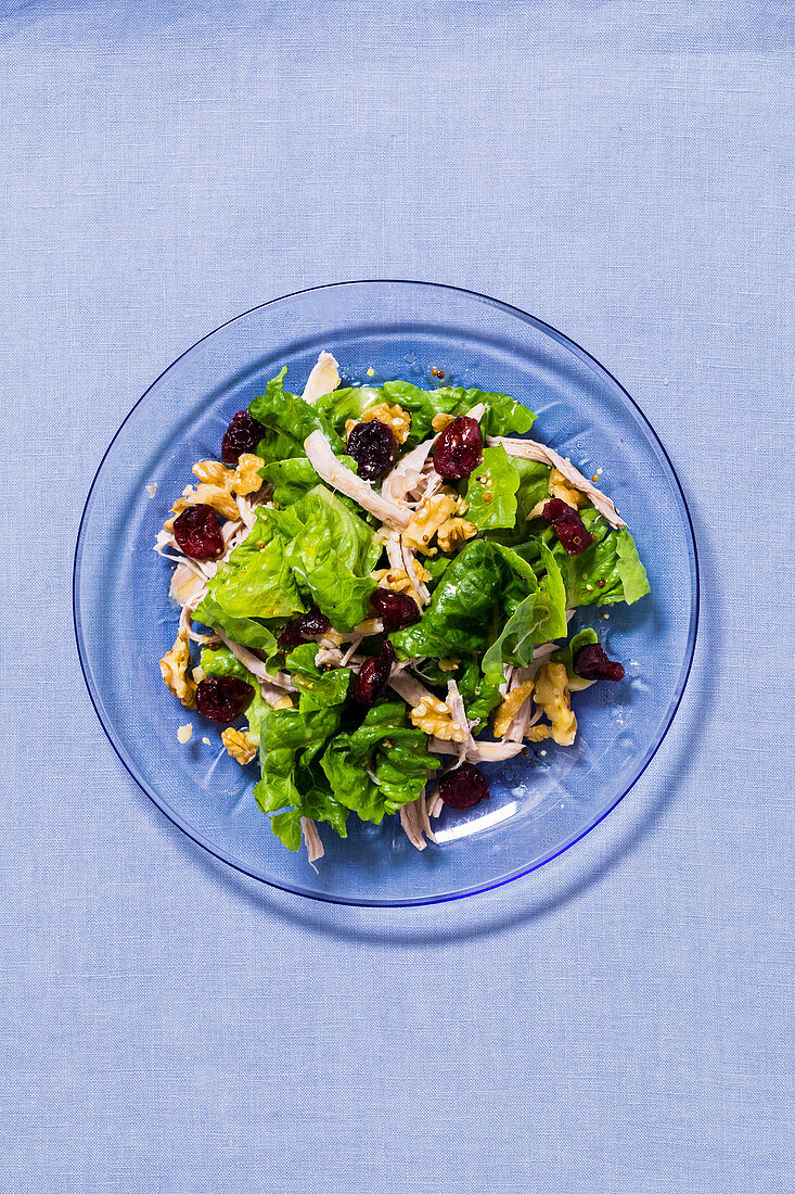 Chicken salad with cranberries and walnuts
