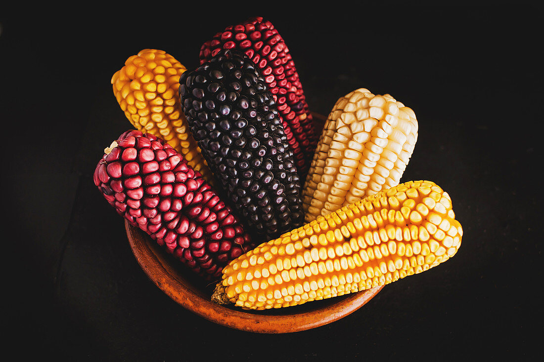 Dried corn of various colors placed in braided basket
