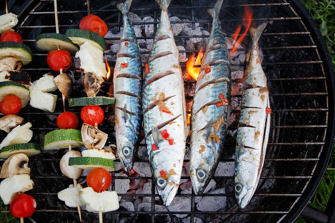 Fresh Mackerel and Vegetable kebabs on BBQ