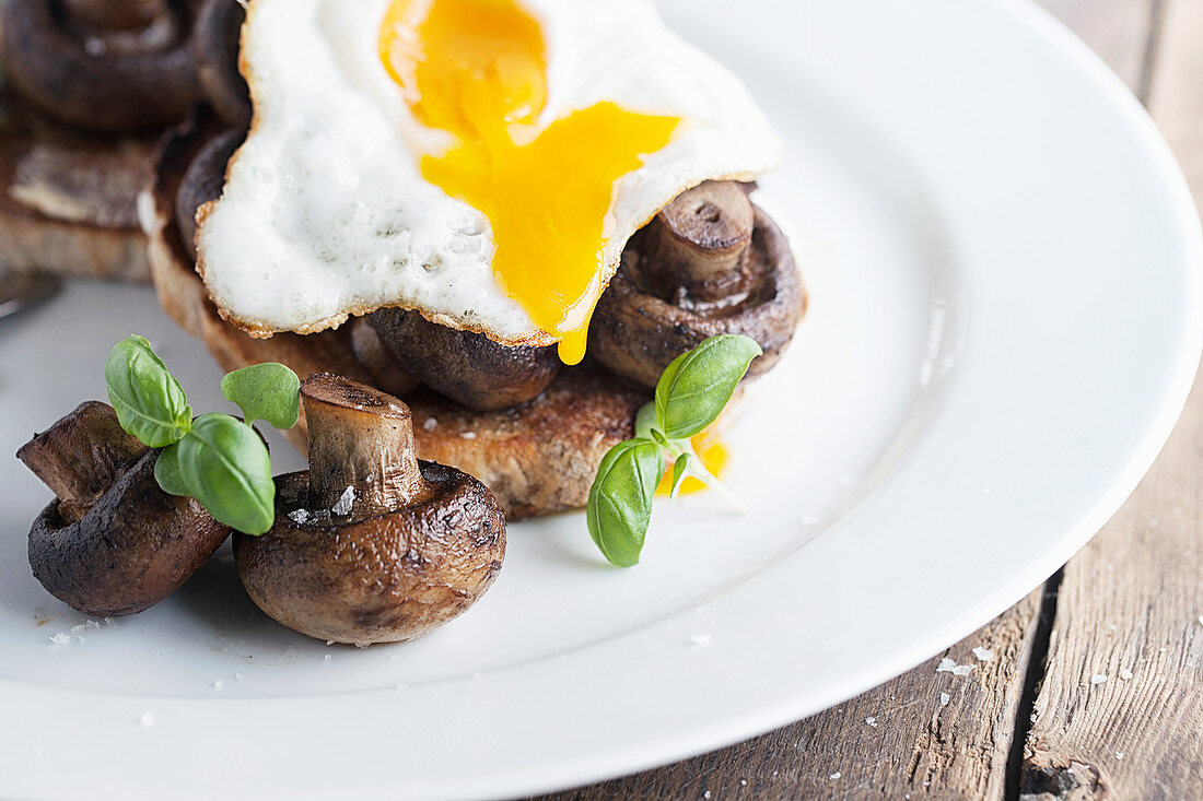 Mushrooms on toast with a dripping Egg on top