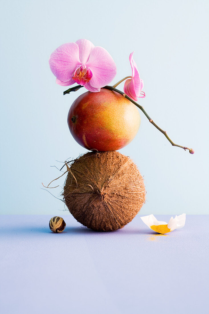 A coconut, a mango and an orchid stacked on top of each other with a nutmeg and curry