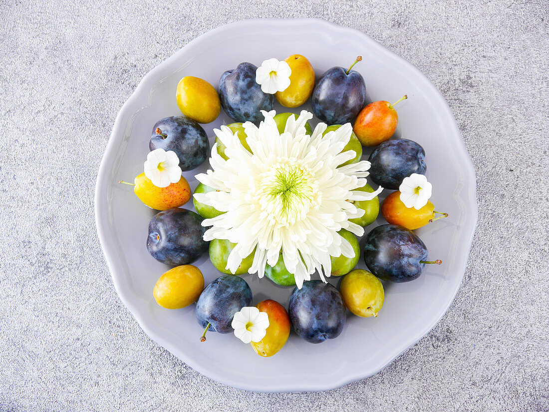 A decorative plate with flowers and various types of plums