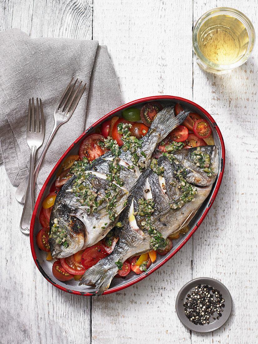 Grillfisch auf Tomatengemüse