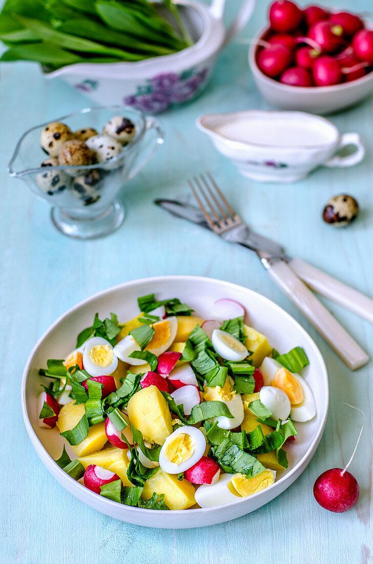 Spring salad with quail eggs, wild garlic, radish, boiled potatoes