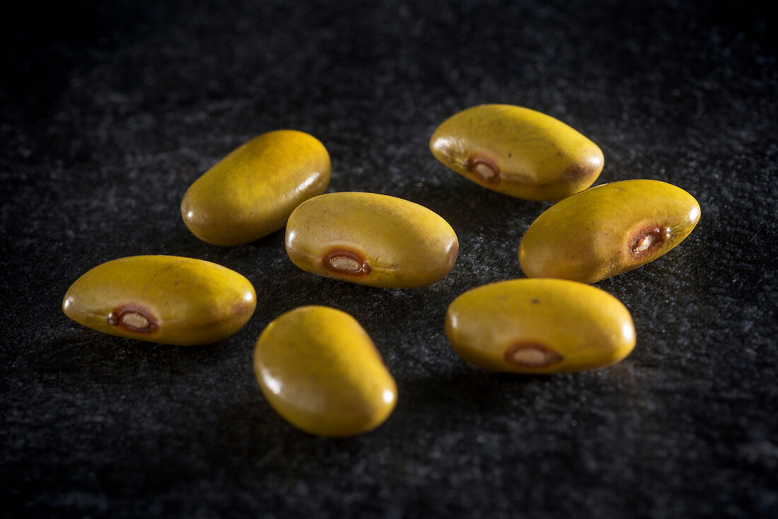 Lupine beans